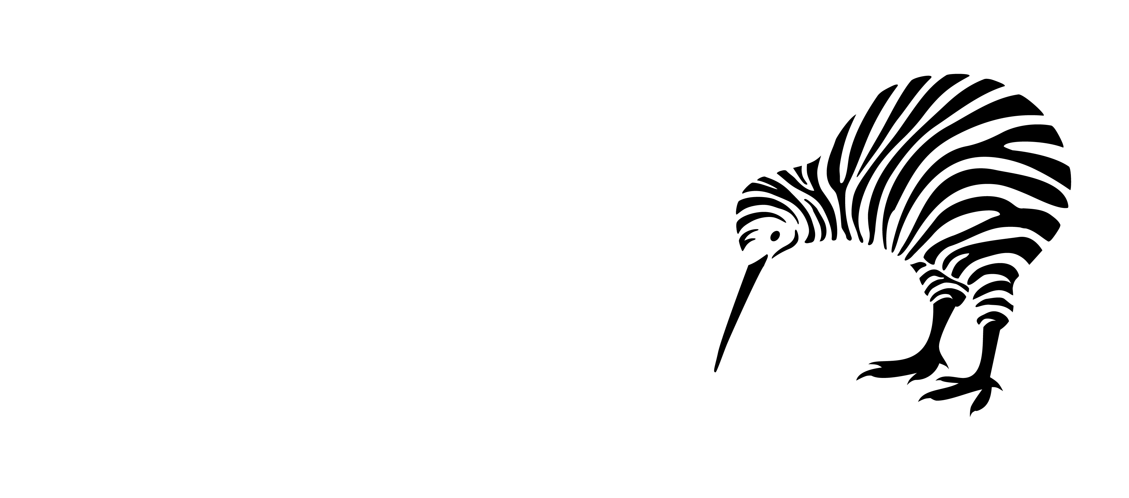 Ehlers Danlos Society New Zealand Incorporated