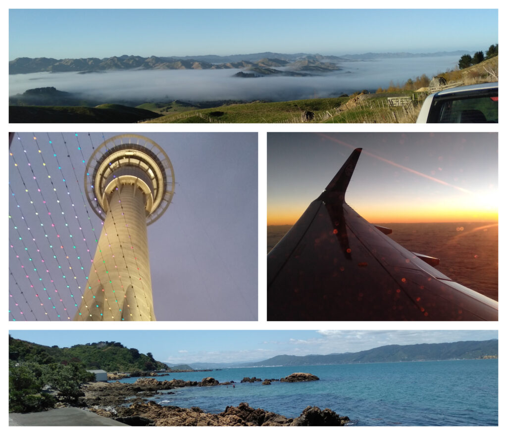 Collage of different trips